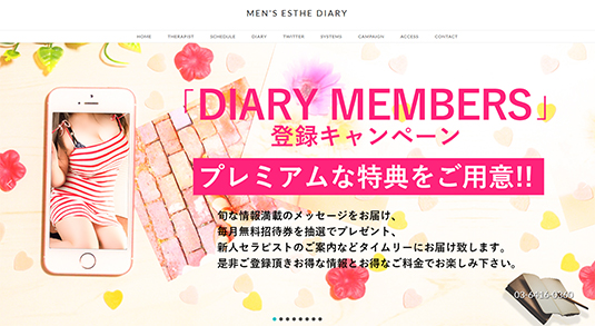 MEN'S-ESTHE-DIARY